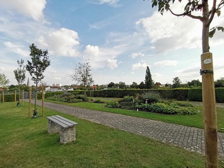 Blick auf den Friedhof mit den Bäumen